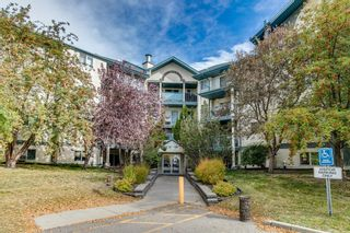 Photo 3: #106 10 Dover Point SE in Calgary: Dover Apartment for sale : MLS®# A1152097