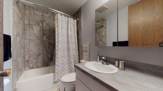 Photo 20: 17283 104 Street in Edmonton: Zone 27 House for sale : MLS®# E4253302