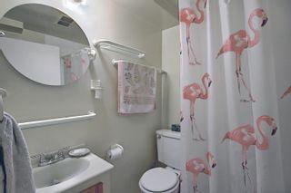 Photo 25: 10504 73 Avenue S in Edmonton: Zone 15 House for sale : MLS®# E4260891