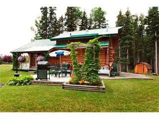 Photo 24: 2 Doyle Drive: Sundre House for sale : MLS®# C4022571