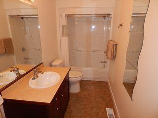 Photo 17: 10 Errington Place in Niverville: Fifth Avenue Estates House for sale ()  : MLS®# 1727517