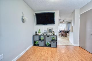 Photo 25: 39 Erin Green Way SE in Calgary: Erin Woods Detached for sale : MLS®# A1118796