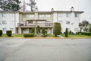 Photo 2: 102 7162 133A Street in Surrey: West Newton Townhouse for sale : MLS®# R2538639