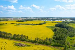 Photo 7: 5901 50 Avenue: Rural Red Deer County Rural Land/Vacant Lot for sale : MLS®# E4232886