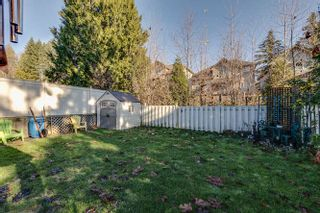 Photo 33: 13528 229 Loop Maple Ridge For Sale