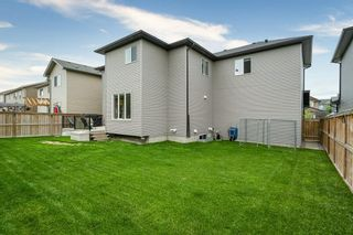 Photo 33: 730 CANOE Avenue SW: Airdrie Detached for sale : MLS®# C4303530