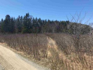 Photo 7: 11574 Highway 7 in Lake Charlotte: 35-Halifax County East Vacant Land for sale (Halifax-Dartmouth)  : MLS®# 201927372