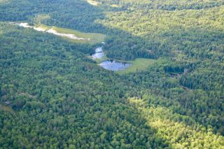Photo 12: 16536 Rainy Lake in Fort Frances: Vacant Land for sale : MLS®# TB212374