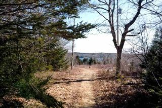 Photo 4: LOT B 293 Hillside Drive in Boutiliers Point: 40-Timberlea, Prospect, St. Margaret`S Bay Vacant Land for sale (Halifax-Dartmouth)  : MLS®# 202106634