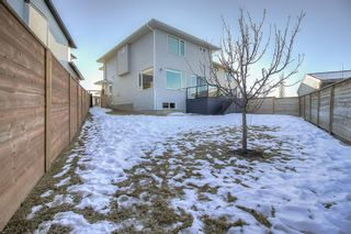 Photo 35: 27 Walden Mount SE in Calgary: Walden Detached for sale : MLS®# A1061206