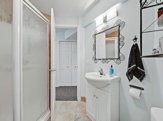Photo 33: 148 Copperfield Common SE in Calgary: Copperfield Detached for sale : MLS®# A1079800