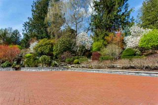 """Photo 19: 21446 76 Avenue in Langley: Willoughby Heights House for sale in """"Willoughby Heights"""" : MLS®# R2405321"""