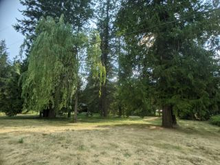Photo 4: Lot 16-17 NELSON STREET in Slocan: Vacant Land for sale : MLS®# 2460223