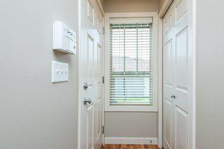 Photo 38: 3814 Allan Drive in Edmonton: Zone 56 Attached Home for sale : MLS®# E4255416