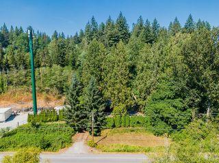 Photo 38: 27029 LOUGHEED Highway in Maple Ridge: Whonnock House for sale : MLS®# R2608657