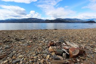 Photo 9: 1706 Blind Bay Road: Blind Bay Vacant Land for sale (South Shuswap)  : MLS®# 10185440