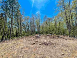 Photo 4: Lot 24 Loon Lane in Aylesford Lake: 404-Kings County Vacant Land for sale (Annapolis Valley)  : MLS®# 202117530