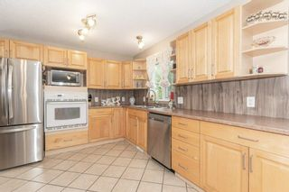 Photo 7: 703 KNOTTWOOD Road S in Edmonton: Zone 29 House for sale : MLS®# E4261398