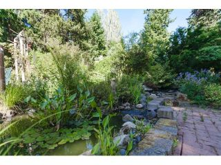"""Photo 20: 2334 170TH Street in Surrey: Pacific Douglas House for sale in """"Grandview"""" (South Surrey White Rock)  : MLS®# F1443778"""