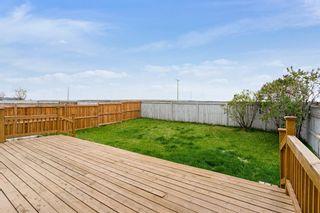 Photo 28: 319 Eldorado Place NE in Calgary: Monterey Park Detached for sale : MLS®# A1114122