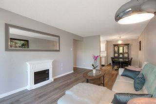 Photo 6: 219 1056 Bernard Avenue in Kelowna: Kelowna North House for sale (Central Okanagan)  : MLS®# 10239718