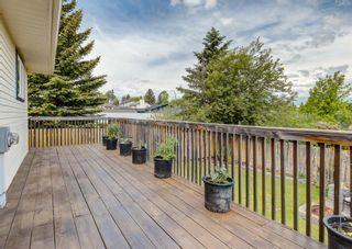 Photo 43: 12 Macewan Park Link NW in Calgary: MacEwan Glen Detached for sale : MLS®# A1121095