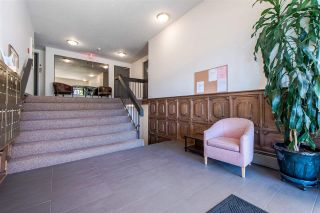 """Photo 14: 515 371 ELLESMERE Avenue in Burnaby: Capitol Hill BN Condo for sale in """"WESTCLIFF ARMS"""" (Burnaby North)  : MLS®# R2333023"""