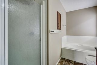 Photo 27: 51 Skyview Springs Cove NE in Calgary: Skyview Ranch Detached for sale : MLS®# C4186074