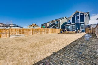 Photo 23: 1310 Kings Heights Way SE: Airdrie Detached for sale : MLS®# A1089637