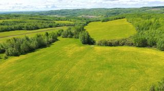 Photo 9: 13934 PACKHAM FRONTAGE Road: Charlie Lake Agri-Business for sale (Fort St. John (Zone 60))  : MLS®# C8039465