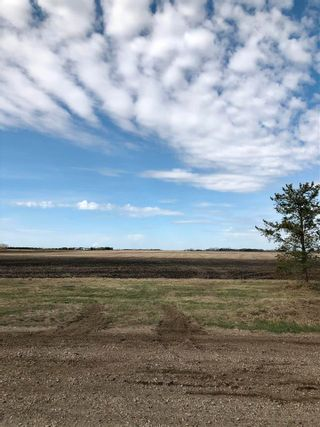 Photo 19: RR 255 & HWY 37: Rural Sturgeon County Rural Land/Vacant Lot for sale : MLS®# E4244134