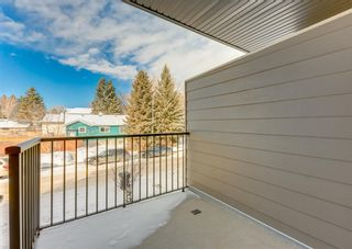 Photo 27: 2824 1 Street NW in Calgary: Tuxedo Park Row/Townhouse for sale : MLS®# A1071019