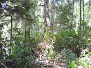 Photo 11: Lot 7 Pearse Island in : Isl Small Islands (North Island Area) Land for sale (Islands)  : MLS®# 862466