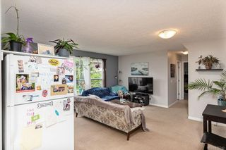 Photo 46: 2344 Ocean Ave in : Si Sidney South-East House for sale (Sidney)  : MLS®# 875742