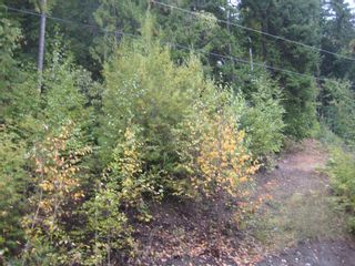 Photo 1: 12 Vickers Trail in Anglemont: Land Only for sale : MLS®# 10055802