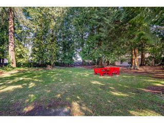 Photo 37: 144 9080 198 STREET in Langley: Walnut Grove Manufactured Home for sale : MLS®# R2547328