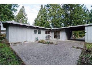"Photo 19: 20508 46A Avenue in Langley: Langley City House for sale in ""MOSSEY ESTATES"" : MLS®# F1433198"