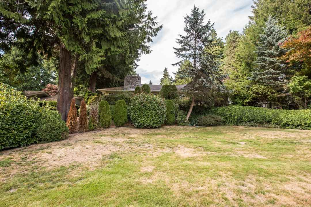 """Photo 5: Photos: 3521 W 47TH Avenue in Vancouver: Southlands House for sale in """"SOUTHLANDS"""" (Vancouver West)  : MLS®# R2005508"""