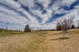 Photo 42: 1144 Lake Huron Crescent SE in Calgary: Bonavista Downs Detached for sale : MLS®# A1098610