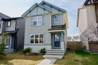 Photo 1: 163 SILVERADO PLAINS Circle SW in Calgary: Silverado Detached for sale : MLS®# C4243826