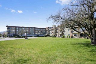 Photo 4: 301 45598 MCINTOSH Drive in Chilliwack: Chilliwack W Young-Well Condo for sale : MLS®# R2513475