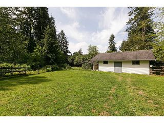 Photo 40: 25990 116TH Avenue in Maple Ridge: Websters Corners House for sale : MLS®# V1097441