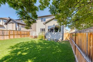 Photo 43: 359 New Brighton Place SE in Calgary: New Brighton Detached for sale : MLS®# A1131115