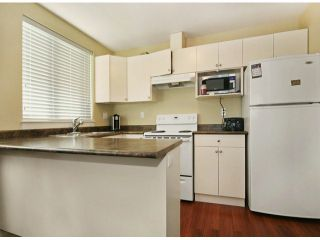 Photo 15: 6798 191A Street in Cloverdale: Clayton House for sale : MLS®# F1400185