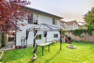Photo 30: 332 Bridlewood Avenue SW in Calgary: Bridlewood Detached for sale : MLS®# A1135711