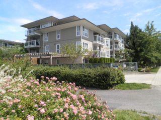 Photo 1: 206 22255 122 Avenue in Maple Ridge: West Central Condo for sale : MLS®# R2086650