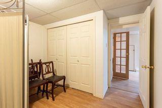 Photo 31:  in Edmonton: Zone 22 House for sale : MLS®# E4254166