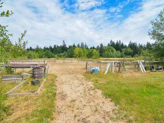Photo 60: 2390 Humphrey Rd in MERVILLE: CV Merville Black Creek House for sale (Comox Valley)  : MLS®# 738200