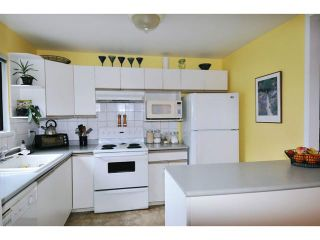 Photo 6: 12102 SCHMIDT CR in Maple Ridge: Northwest Maple Ridge Condo for sale : MLS®# V1055977