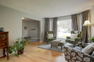 Photo 5: 113 Mt Sparrowhawk Place SE in Calgary: McKenzie Lake Detached for sale : MLS®# A1130042